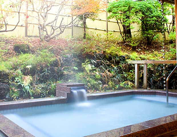 http://www.fujiview.jp/hotspring/index.html