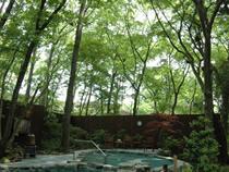 足柄の森の温泉 おんりーゆー(神奈川県)