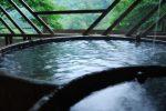 九酔渓温泉 ホタルと絶景の宿 つれづれ