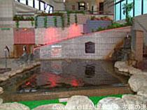 炭酸美肌温泉 らんぷの湯 花園店