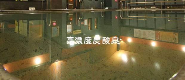 の 湯 寺 仙台 竜泉