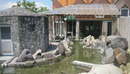竜ヶ窪温泉 竜神の館