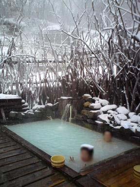 屋 旅館 相模 新 野地 温泉